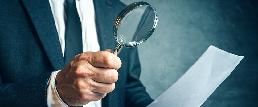 Litigation Support & Forensic Accounting